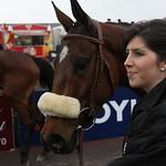horse1_lr