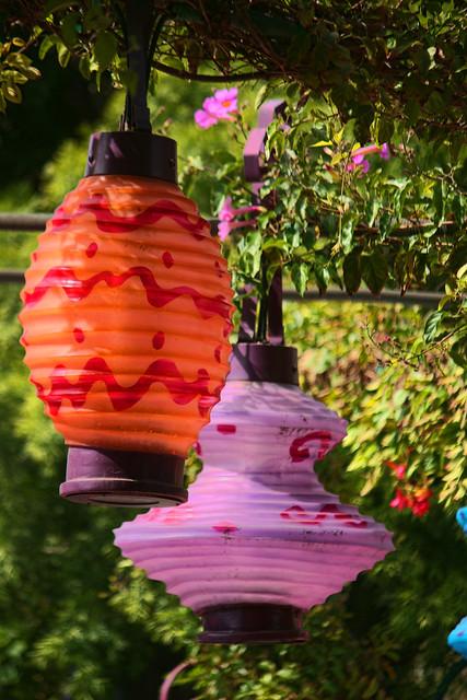 Wonderland Lanterns Flickr Photo Sharing