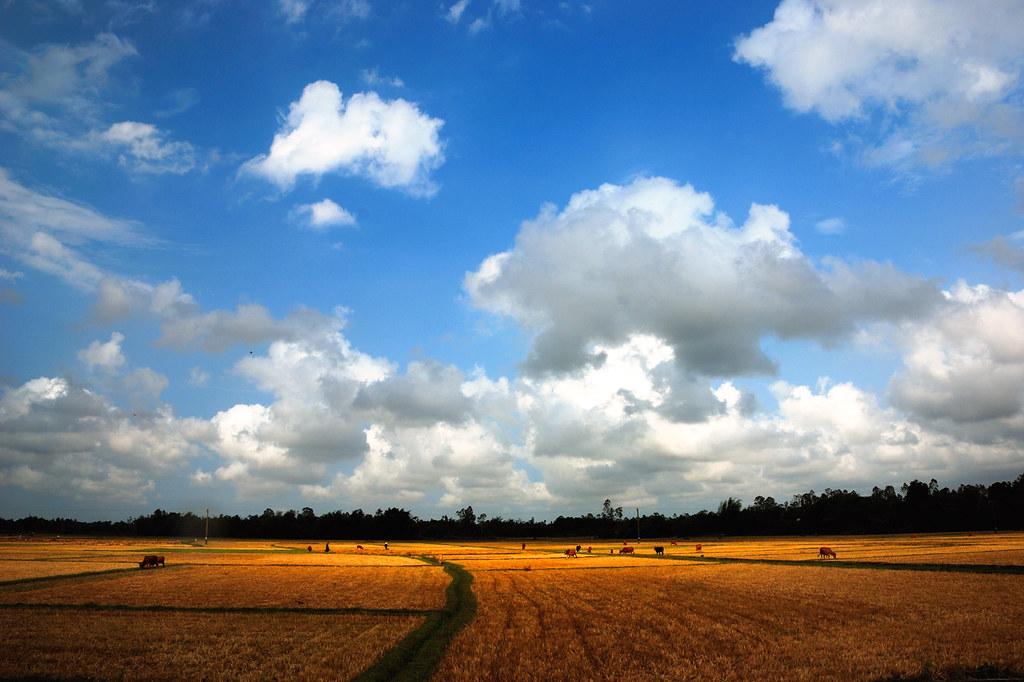 Vùng trời bình yên