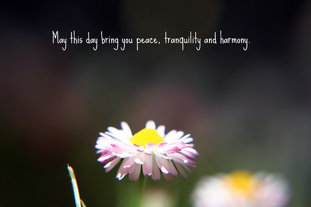 May This Day Bring You Peace, Tranquility And Harmony