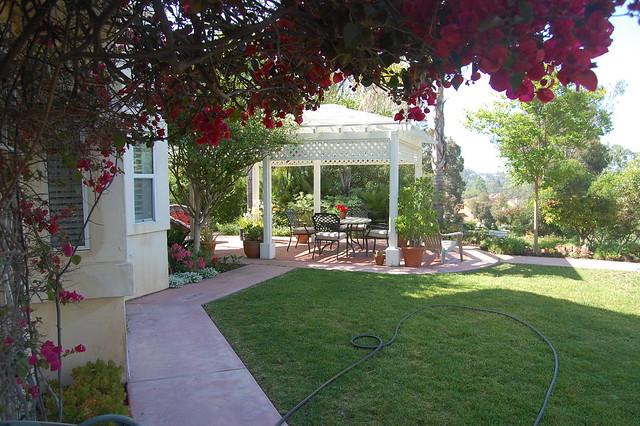 Backyard - May 6, 2010