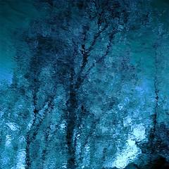 Moonlight...!!!