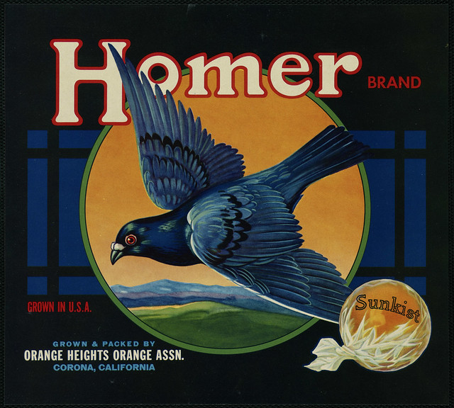 Homer Brand: Grown & packed by Orange Heights Orange Assn., Corona, California