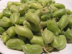 vegetable, produce, fruit, edamame, food,
