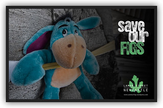 save our figs