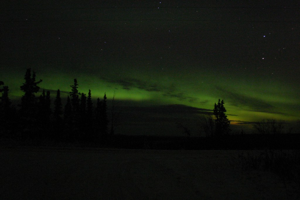 Aurora Bottom 1