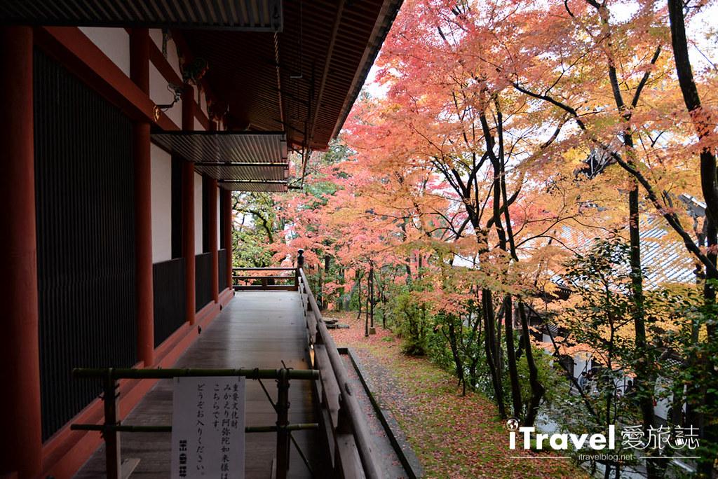 京都赏枫景点 永观堂 (33)