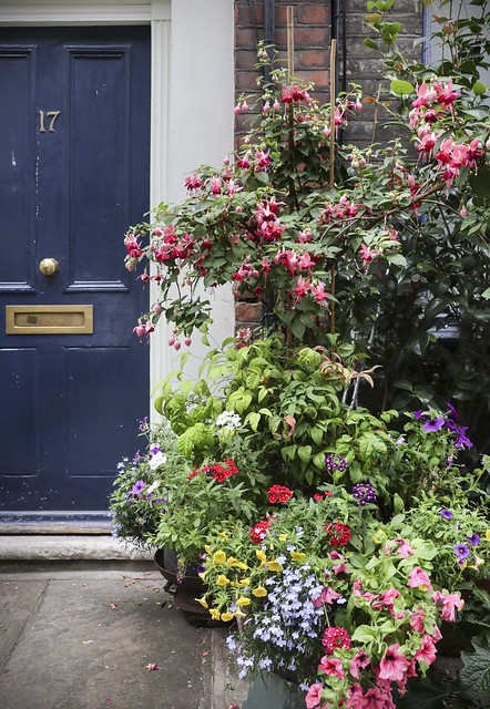 Strolling around Lamb's Conduit Street, London