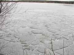 Ice-Tiled Lake