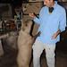 Dan Feeds a Hungry Capybara - Concepcion, Paraguay