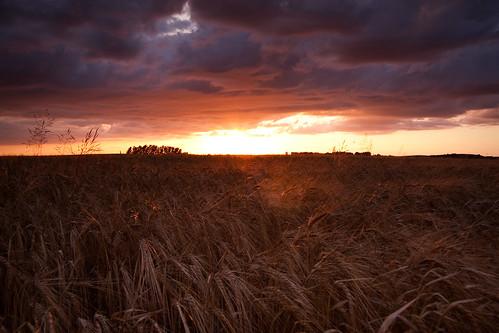 blue sunset red sky orange yellow catchycolors landscape skåne sweden canonefs1785mmf456isusm hyby klågerup