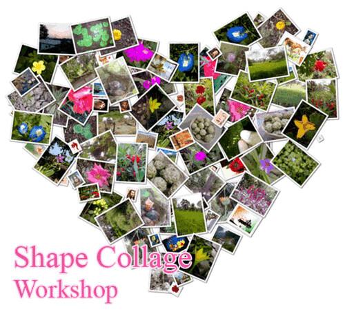 graphic design photo  cool learn graphic design online