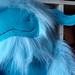 blue yeti face