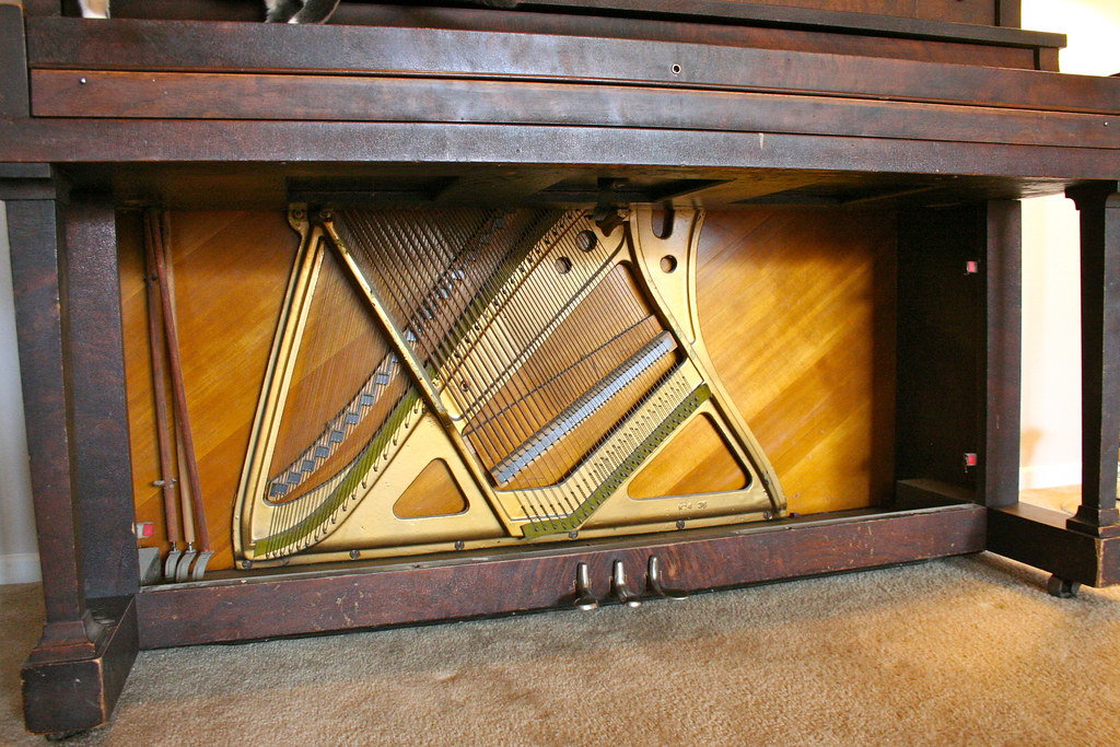 bottom of the harp and soundboard