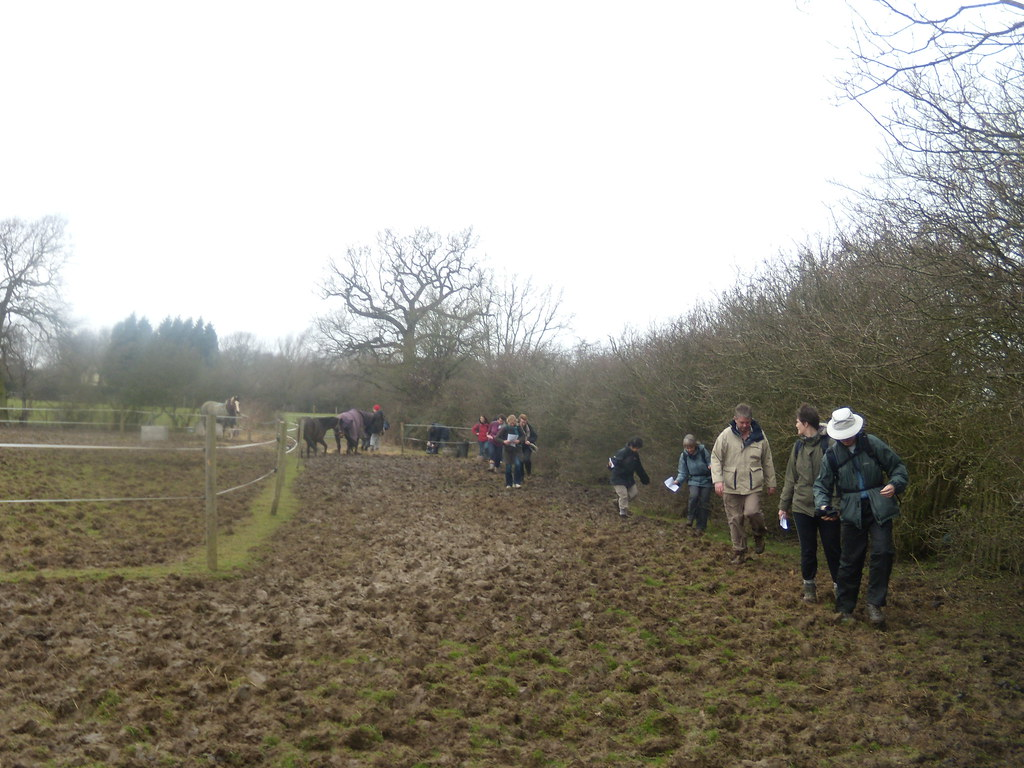 You put your left leg in..... A particularly muddy field forced us to do a sort of slow Hokey Cokey Staplehurst to Headcorn