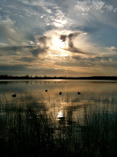 sky sun sunlight lake nature water beauty clouds sunrise pond ducks