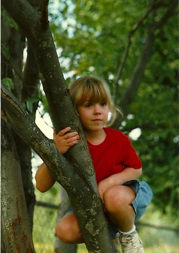 Tree K 1997