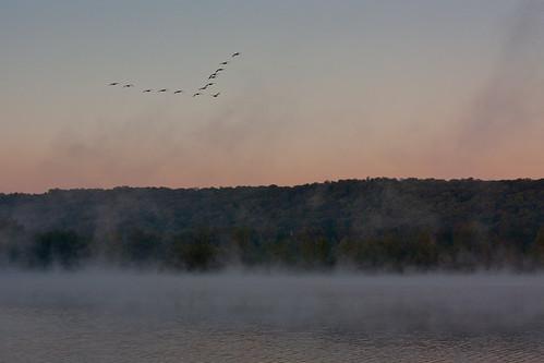 sunrise geese cassadagalake