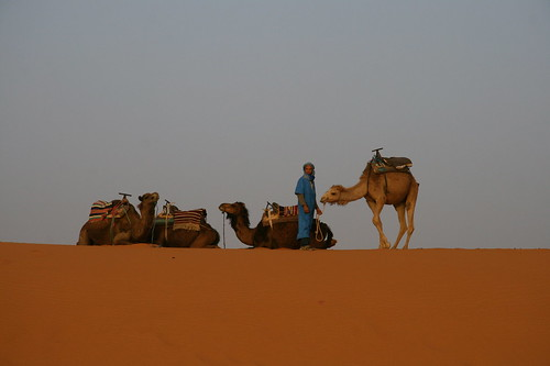 morocco merzouga ergchebbi westernsaharadesert