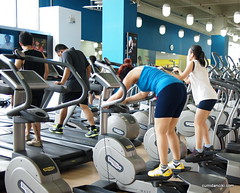 bodypump(0.0), weight training(0.0), sport venue(0.0), sports(0.0), deadlift(0.0), indoor rower(0.0), arm(1.0), exercise machine(1.0), exercise equipment(1.0), room(1.0), muscle(1.0), physical fitness(1.0), gym(1.0),