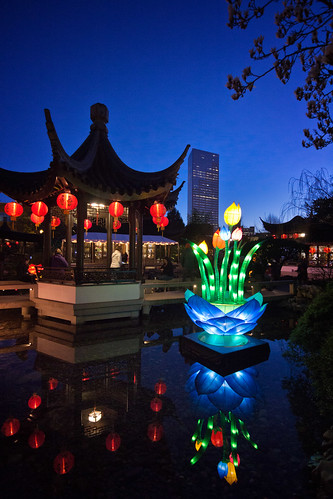 lansu chinese garden portland oregon night dusk lanternviewing pond reflection