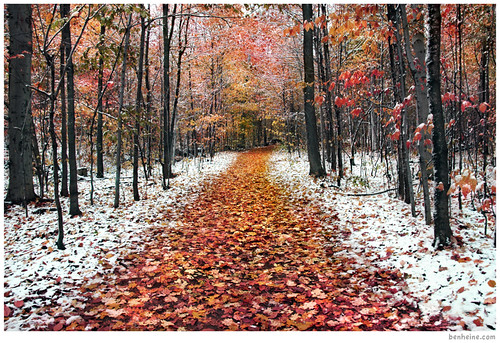 Two Seasons - 2 - | by Ben Heine