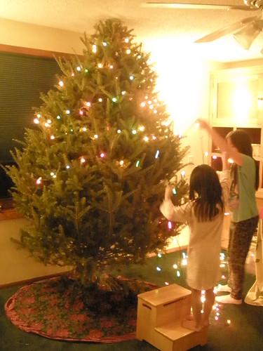 Girls Hanging Lights on Tree