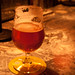 Pliny the Elder 018