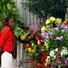 Floristería. Addis Abeba
