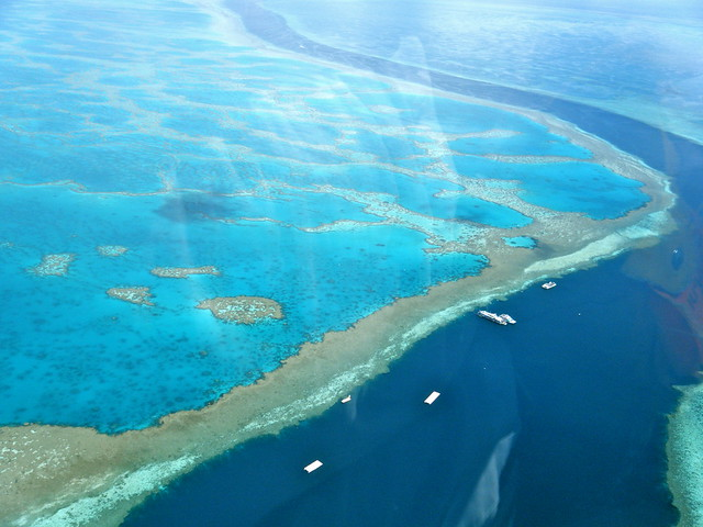 Amazing Great Barrier Reef