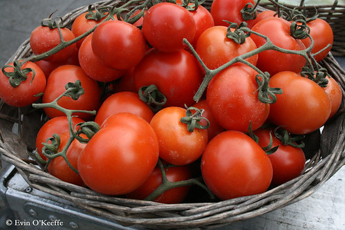 Irish Vine Ripened Tomatoes