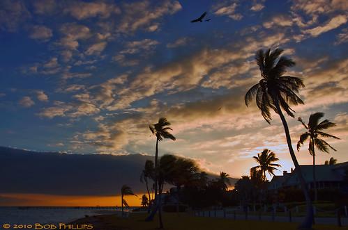 clouds sunrise palms florida palmtrees pineisland bokeelia bocilla