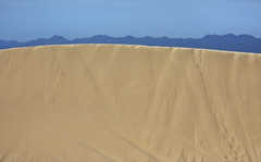 Imperial Sand Dunes Recreation and Wilderness Area