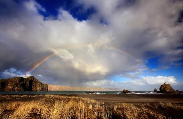 field, rye, rainbow