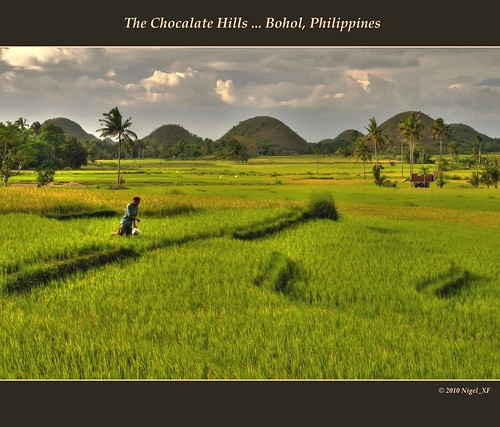 The Chocolate Hills ... Bohol, Philippines