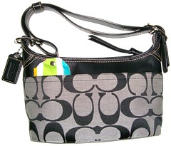 coin purse(0.0), design(0.0), bag(1.0), shoulder bag(1.0), hobo bag(1.0), handbag(1.0),