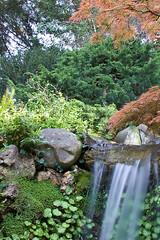Hakone Gardens - Saratoga
