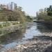 Small photo of Polluted Malad Creek at Lokhandwala,Mumbai