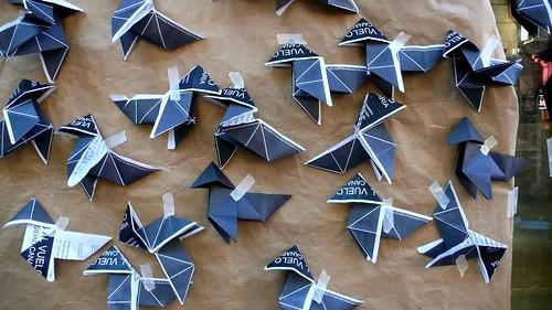 Paper Canary 1 Photos | 68 No a la descatalogación de Especies Parlamento de Ca