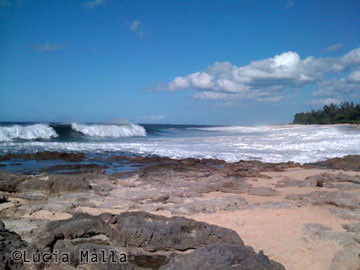 Praia de Lost