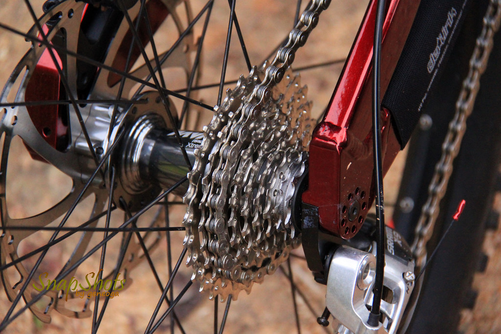 Mountain Bike Gear and Chain
