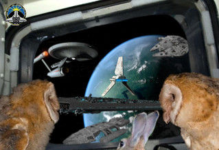 "Aboard the Space Shuttle, Ashley and Carrie have befriended Tauntz and wonder, ""Isn't that our Ship?"""