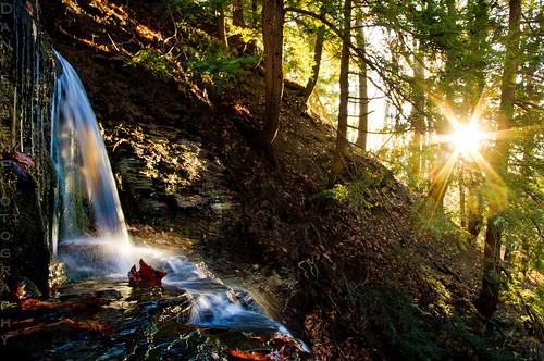 autumn sun leaves sunrise dawn waterfall pentax intothesun wny kx eastaurora sunstar knoxfarms