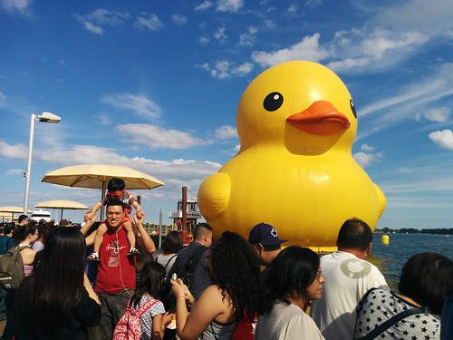 The World's Biggest Rubber Duckie #toronto #htopark #lakeontario #worldsbiggestrubberduckie #rubberduck #rubberduckie #yellow