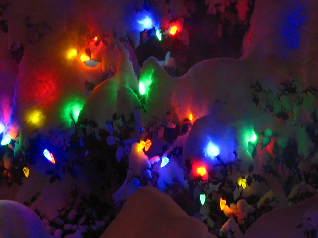 Christmas lights in the Snow 8384