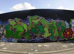 Graffiti Delft 2006 - Prinses Irene Tunnel