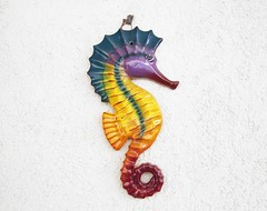 seahorse, animal,