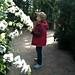 2010 02 Orchid Daze