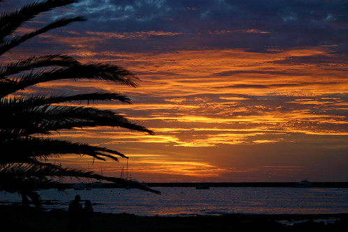 sunset sea 2 tree canon uruguay atardecer couple pareja palmera puntadeleste nwm