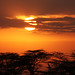 Kenyan sunrise by Gareth Codd Photography